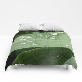 Rain Drops Comforters