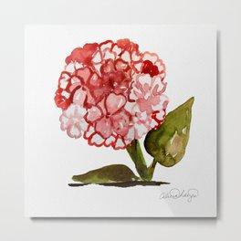 Pink Hydrangea Flower Metal Print