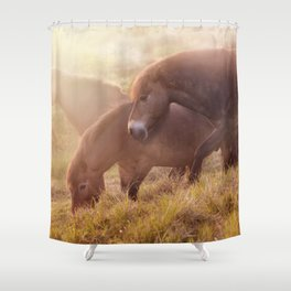 Morning impresion with horses Shower Curtain