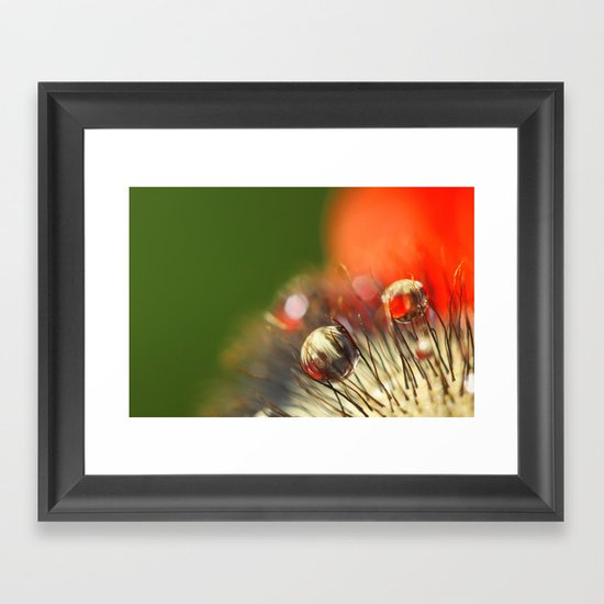 Poppy Drop Abstract Framed Art Print