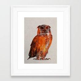 Owl In Wildfire Framed Art Print