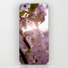 Sunlit peak iPhone & iPod Skin