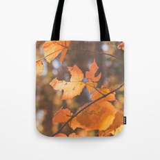 red autumn leaves Tote Bag