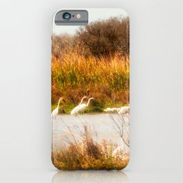 The Gathering Place iPhone Case