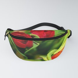 rubeum tulips Fanny Pack