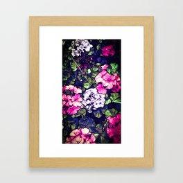 Pink Geraniums, Goddess Energy Framed Art Print