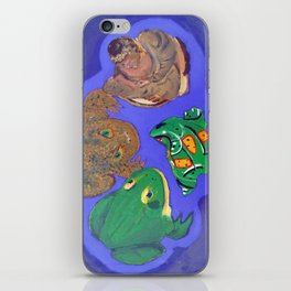 4 Objects iPhone Skin