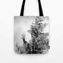 The Tree in the Wind Tote Bag