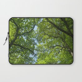 New Forest Beech Canopy Laptop Sleeve