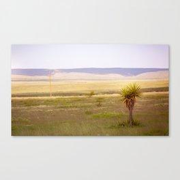 West Texas Vista Canvas Print