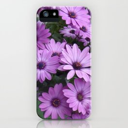 Lilac & Sage Color Purple Daisy Flowers Garden iPhone Case