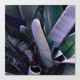 Night Tropics 4 Canvas Print