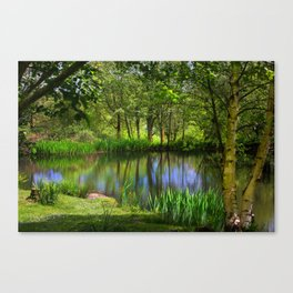 Spring views Canvas Print