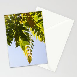crown of a tree Stationery Cards