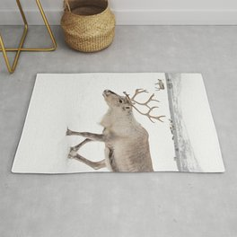 Reindeer in The Snow In Wintertime Photo Art Print   North Of Norway Lapland   Travel Photography Rug