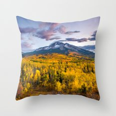Chasing The Gold Throw Pillow