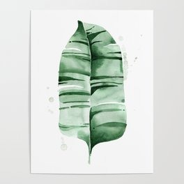 Banana Leaf no.7 Poster