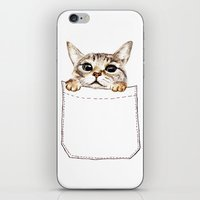 pocket iPhone & iPod Skins featuring Pocket cat by Anna Shell