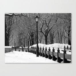 Central Park in Winter, Black & White Canvas Print