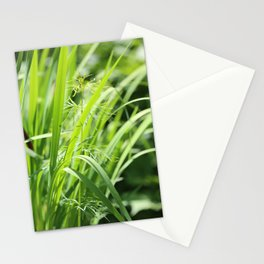 Singular Stationery Cards