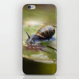 Snailing iPhone Skin