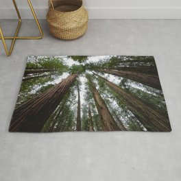 Redwood Forest Adventure VI - Nature Photography Rug