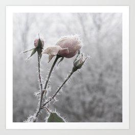 The Ice Fairy Art Print