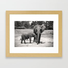 Elephant Mom & Baby Framed Art Print