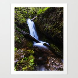 Waterfall in enchanted forest Art Print