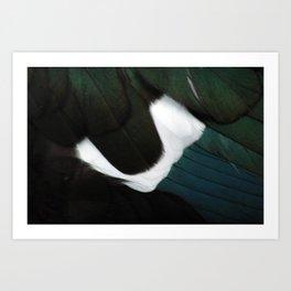 Russian Goose Plumage Macro Art Print
