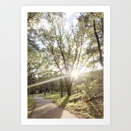 Golden Hour II Art Print