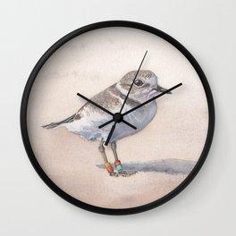 Monterey Bay Snowy Plover Wall Clock