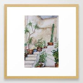 Crete Courtyard Plants Framed Art Print