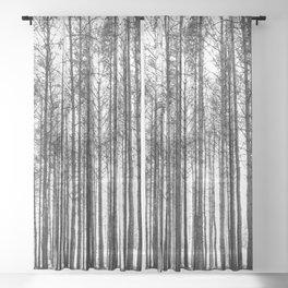 trees in forest landscape - black and white nature photography Sheer Curtain