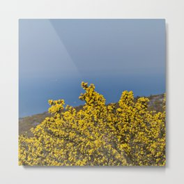 Landscape on mountain with blue sky Metal Print