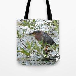 Green Heron at Lakeside Tote Bag