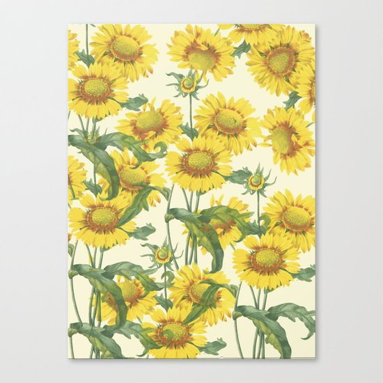 Yellow flowers in full bloom Canvas Print