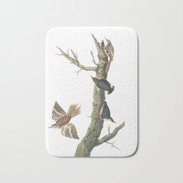 Brown creeper, Birds of America, Audubon Plate 415 Bath Mat