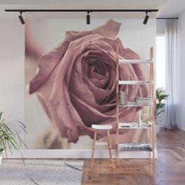 Dusky Rose, 2 Wall Mural