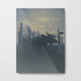 Moose loose Metal Print