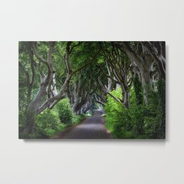 Dark Hedges, Northern Ireland. Metal Print
