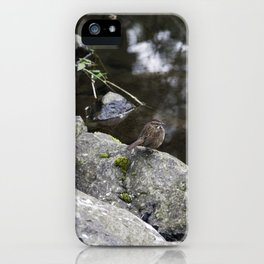 Sparrow on a rock iPhone Case