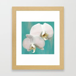 WHITE ORCHIDS - AQUA Framed Art Print
