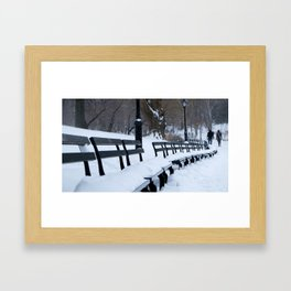 Snow in Central Park XII Framed Art Print