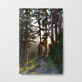 Baker, Sunset Hike Metal Print