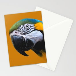 Macaw Parrot Photography | Exotic Bird | Tropical | Turquoise | Yellow | Art Print Stationery Cards