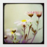 blush Canvas Prints featuring Blush by Sandra Arduini