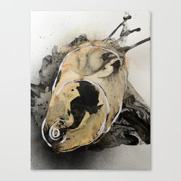 Oyster #1 Canvas Print