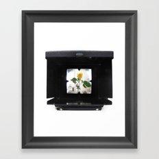 ROSE CAMERA Framed Art Print