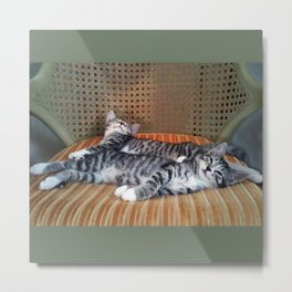 Resting Metal Print